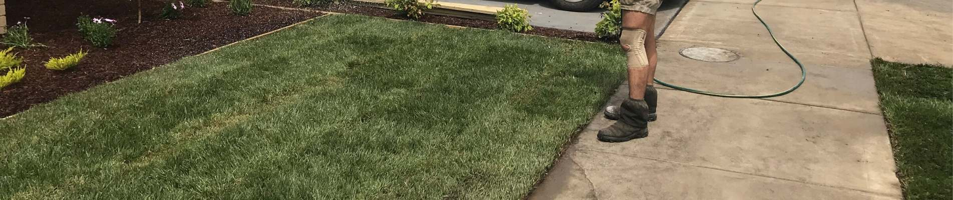 Clyde Gardener