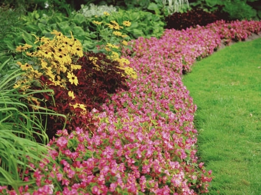 Beautiful flower garden design for your home