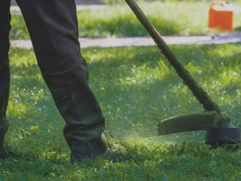 CGS are back offering garden maintenance services