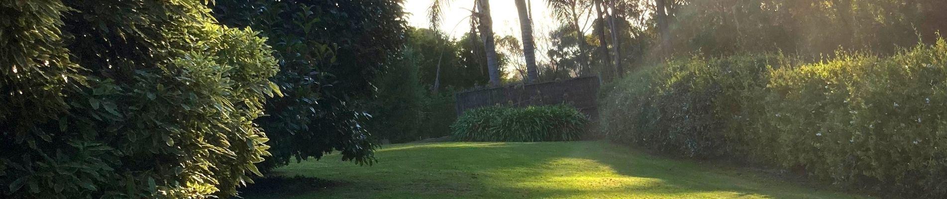 Lawn mowing in Warragul